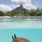Polinesia un sogno che diventa realtà