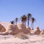 Vacanze Estate 2010 in Tunisia
