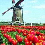 Vacanza in Olanda: Amsterdam capitale del divertimento