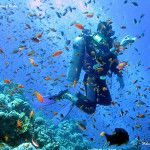 Last Minute Mar Rosso – Capodanno a Sharm