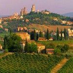 Un made in Italy conosciuto in tutto il Mondo: il vino.